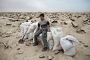 A boy sits on sacks of gravel collected from under the runway at Yasser Arafat International Airport in southern Gaza. Gravel fetches 170 Shekels (approx EUR34) per tonne and is vital for the production of concrete.