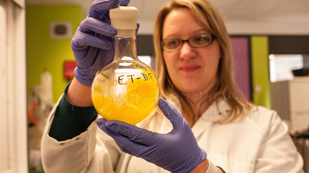 Dr Delphine Lecercl&eacute; is observing ET-D5.<br /> Dr Delphine LECERCLE graduated from Paris-Sud University in 2007, with a PhD degree in organic chemistry. After a postdoctoral training at Paris Descartes University, she joined Ecrins Therapeutics in 2011 as responsible of the medicinal chemistry