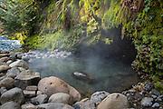 Deer Creek Hot Springs on the McKenzie River, Willamette National Forest, Oregon.
