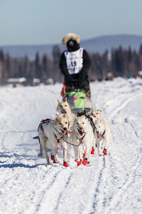 Musher Gunnar Johnson competing in the 45rd Iditarod Trail Sled Dog Race on the Chena River after leaving the restart in Fairbanks in Interior Alaska.  Afternoon. Winter.