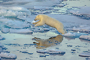 Canadian Arctic and Greenland 2015