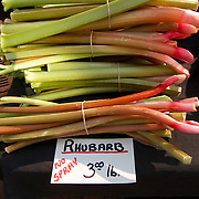 .Rhubard for sale at the farmers market. .The Dane County Farmers Market is held Saturday mornings from early April through early November on the Capitol Square in Madison, Wisconsin.