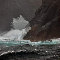 Fulmars and gannets over stormy seas, St Kilda, Outer Hebrides, West Scotland.