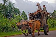 Ox cart in Chorro de Maita, Holguin, Cuba.