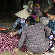 Dong Ba Market / Hue / Vietnam