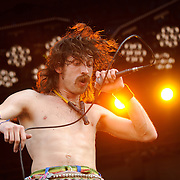 Gogol Bordello, Lollapalooza 2008