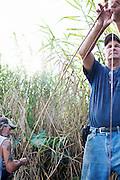 Julius Gaudet, 62, helps Rebel bait a line while alligator hunting near Shell Island, Louisiana on Saturday, September 19, 2009.