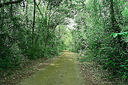 Pipeline Road