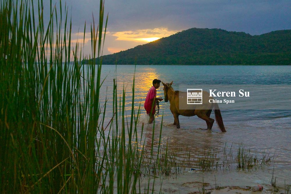 Farmer with horses in Lago Peten Itza, El Remate, Guatemala