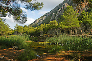 Turkey, Antalya Province, Olympos National Park
