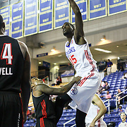 Delaware 87ers Forward Norvel Pelle (15) dunks over a Idaho Stampede defender in the first half of a NBA D-league regular season basketball game between Delaware 87ers and Idaho Stampede Thursday, Dec. 12, 2013 at The Bob Carpenter Sports Convocation Center, Newark, DE