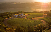 Aerial view of Penner Ash Winery and estate vineyards, Yamhill AVA, Willamette Valley, Oregon