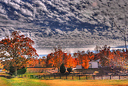 Wake Forest Landscapes