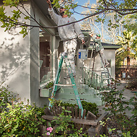 Caesar and Fernando of M.D Quality Painting work on a home at the corner of Myrtle and Silver Streets in Calistoga