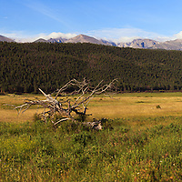 High mountains overlook a tranquil meadow in Rocky Mountain National Park near Estes Park, Colorado.
