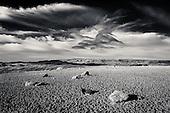Prairie Black & White