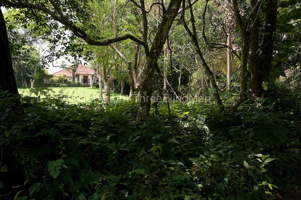 LUNUGANGA. Geoffrey Bawa's garden and country home.