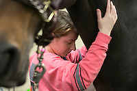 04/03/2015 - Cummings School of Veterinary Medicine research assistant Abby Brisbois, hugs Willow a Holsteiner Mare, as the horse is fitted with prototype protective leg wear and monitors so she can be recorded on a treadmill on Friday, April 3, 2015 in the Hospital for Large Animals. The leg wear is being developed by Hosso Inc. in conjunction with Cummings School faculty and students. (Matthew Healey for Tufts University)
