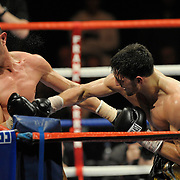 Nathan Cleverly v Antonio Brancalion