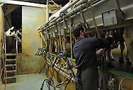 07/05/15 - SAINT BONNET DE CHIRAC - LOZERE - FRANCE - GAEC des Bleuets, elevage mixte bovin/ovin lait. David RAZON dans la salle de traite - Photo Jerome CHABANNE