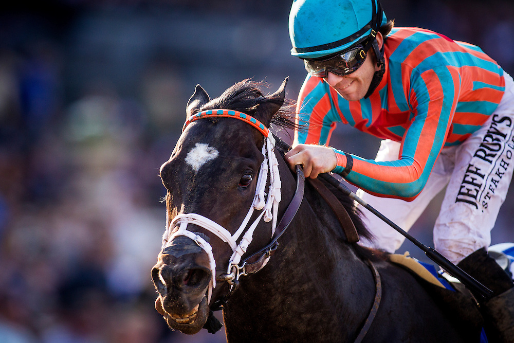 January 31 2015: Conquest Two Step with Joe Talamo up  wins the Palos Verdes Stakes GII at Santa Anita Park in Arcadia CA. Alex Evers/ESW/CSM