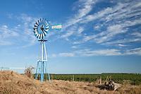 MOLINO DE AGUA PINTADO CON LOS COLORES DE LA BANDERA NACIONAL ARGENTINA, ALREDEDORES DE GENERAL VILLEGAS, PROVINCIA DE BUENOS AIRES, ARGENTINA