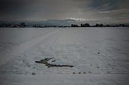 Snow blankets rice fields in the broad Kitakami plain in Tohoku's Iwate Prefecture.  Japan.