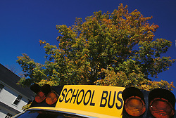 Yellow school bus.