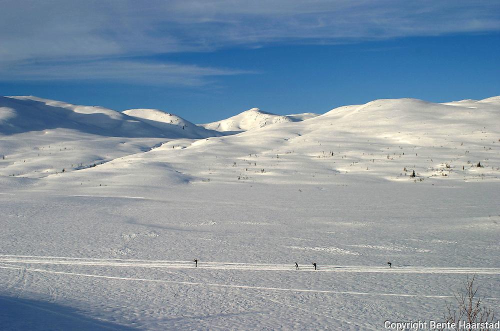 Skiing by the Skarvene mountains. Utrolige forhold for skiturister i Skarvan og Roltdalen nasjonalpark (opprettet 2004) i Selbu. I bakgrunnen fjellkjeden Skarvan med fjelltoppen Storskarven i midten. Kvernfjellvatnet foran. Skarvan.