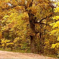 Western North Carolina, Fall