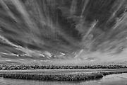 Clouds, Salt Marsh.  Black and white fine art print for sale or licensed use