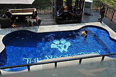 NOV 04  2014 Luxury pet hotel in Singapore