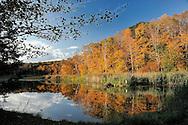 Pond near Litchfield, Connecticut, USA