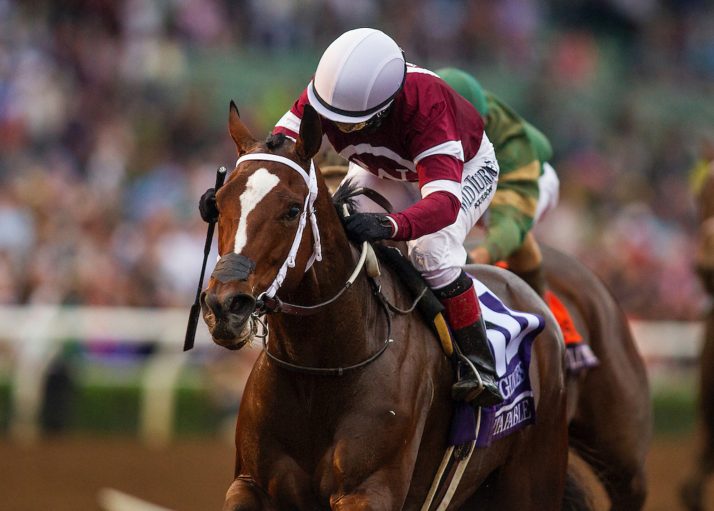 October 31 2014: Untapable and Rosie Napravnik  win the Breeders Cup Distaff at Santa Anita Park in Arcadia CA. Alex Evers/ESW/CSM