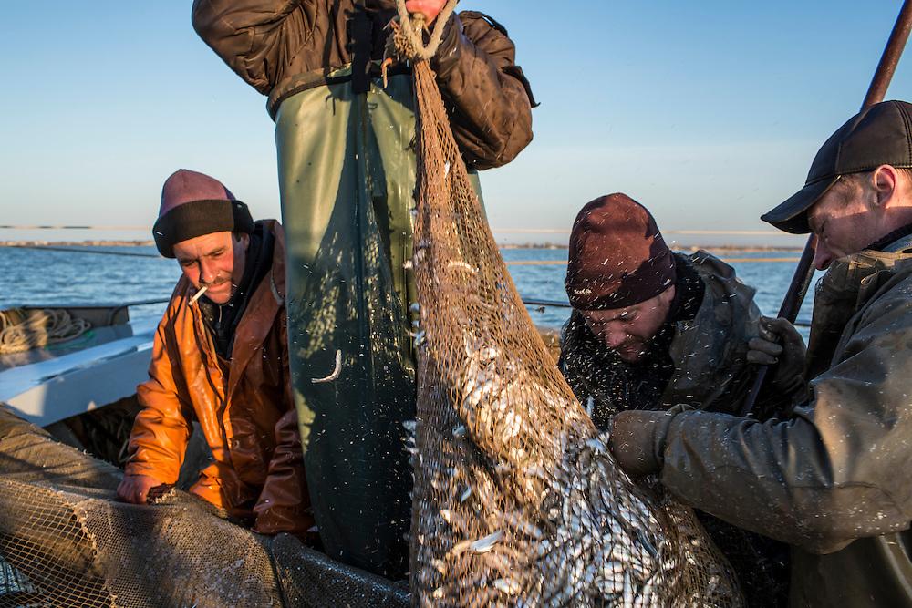 Fishermen gather their catch on the Sea of Azov on Saturday, April 11, 2015 near Siedove, Ukraine.