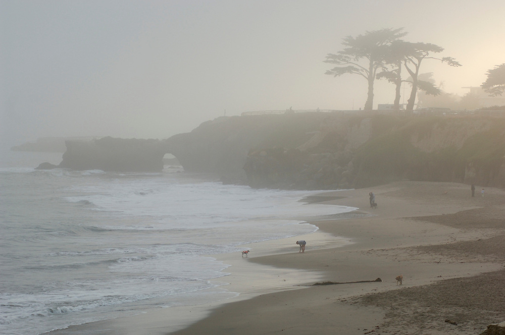 beach at Sunset, Lighthouse Field State Park, Santa Cruz, California, United States of America