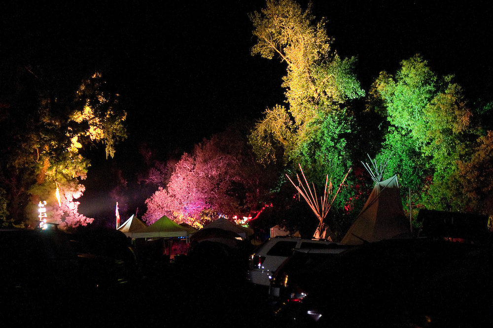 Colored lights make trees look otherworldly.