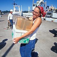 USA, Oregon, Grad students unload gear from U of Washington research ship R/V Thomas G. Thompson after 3-week trip