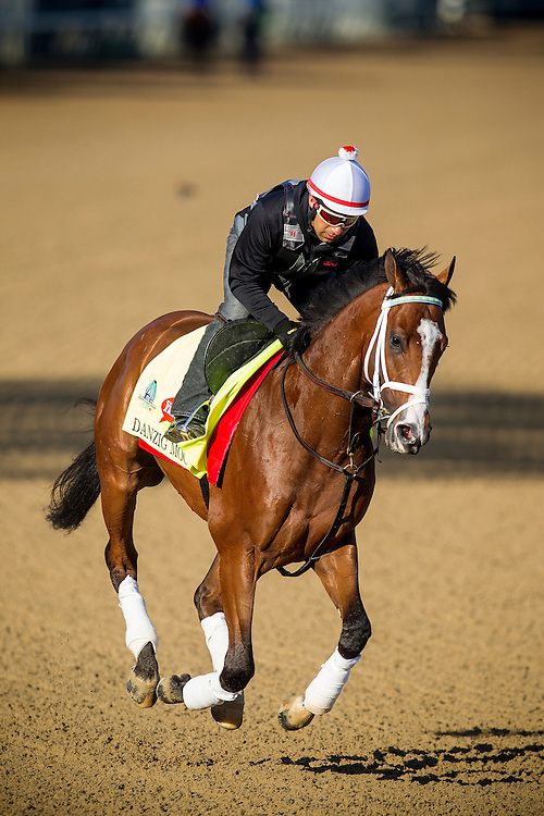 April 29, 2015: Danzig Moon gallops in preparation for the Kentucky Derby at Churchill Downs Louisville Ky. Alex Evers/ESW/CSM