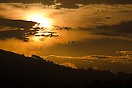 Golden Morning, Dana Point California