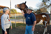 Crawford, Texas, USA.vlnr: Farmer und Nachbarn von Bush, Billy Lynch (71) und Keith Lynch (71) auf ihrer Farm..left to right:.Farmers and neighbors of Bush, Billy Lynch (71) and Keith Lynch (71) at their farm ..Crawford, Texas, is the hometown of outgoing President George W. Bush, who bought the Prairie Chapel Ranch, located seven miles (10 km) northwest of town, in 1999. The farm was considered the Western White House of the President, who is leaving soon for a new home in  Dallas. His departure will bring major changes to this small town (population: 705), which had in part made a living by catering to the tourist, press and protesting crowds that came to visit. At the same time they are very tired of it all and seem to be glad that life can finally get back to normal now...©Stefan Falke