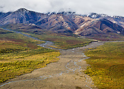 The Alaska Range rises above tundra and the braided East Fork Toklat River seen from Polychrome Overlook, in Denali National Park, Alaska, USA.