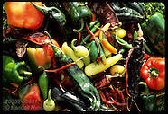 09: FARMING PEPPER BOUNTY