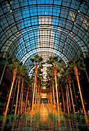 Winter Garden, Twin Towers, World FInancial Center, Manhattan, New York City, New York, USA