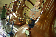 copper stills at the Talisker single malt whisky distillery, Isle of Skye, Scotland.