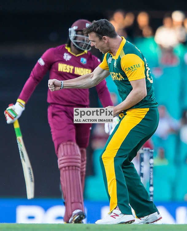 ICC Cricket World Cup 2015 Tournament Match, South Africa v West Indies, Sydney Cricket Ground; 27th February 2015<br /> South Africa&rsquo;s Kyle Abbott reacts after taking the wicket of West Indies Chris Gayle