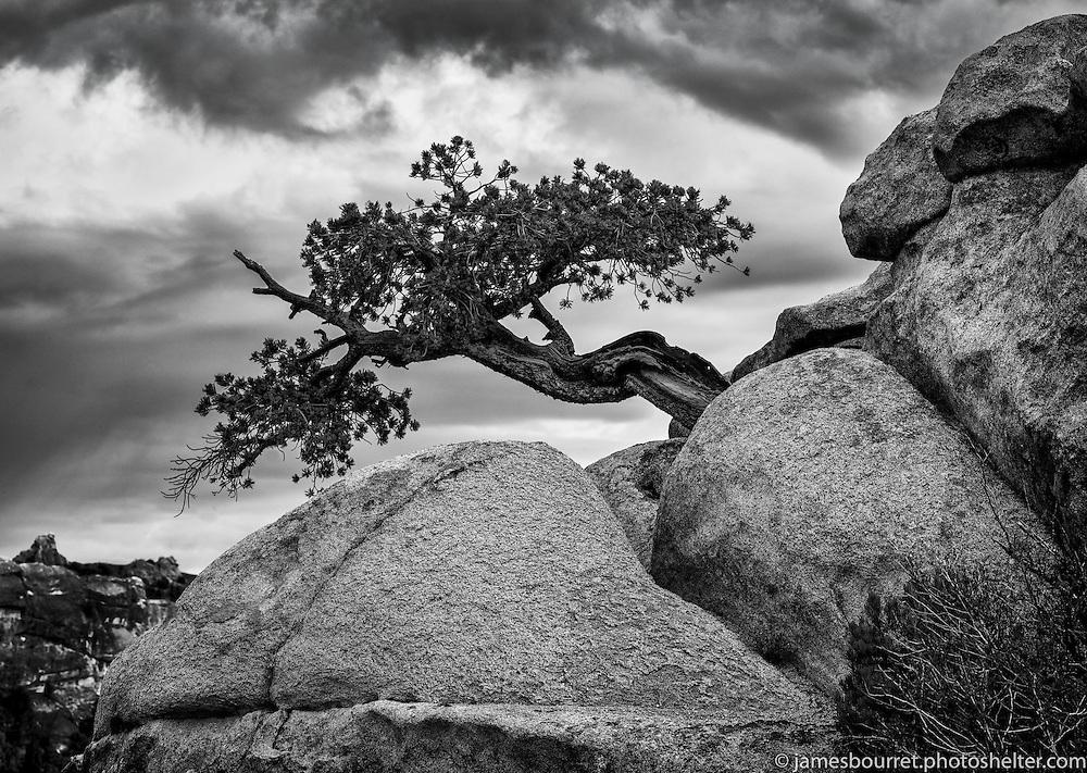 City of Rocks National Monument, Idaho
