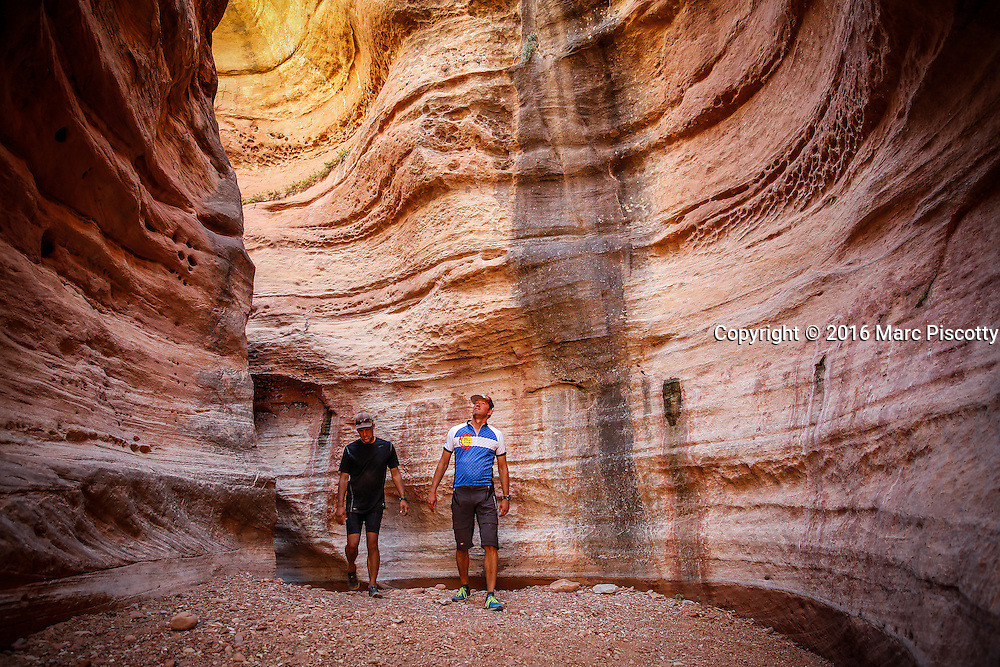 SHOT 10/15/16 1:04:44 PM - Mountain bikers explore a slot canyon along the White Rim Trail. The White Rim is a mountain biking trip in Canyonlands National Park just outside of Moab, Utah. The White Rim Road is a 71.2-mile-long unpaved four-wheel drive road that traverses the top of the White Rim Sandstone formation below the Island in the Sky mesa of Canyonlands National Park in southern Utah in the United States. The road was constructed in the 1950s by the Atomic Energy Commission to provide access for individual prospectors intent on mining uranium deposits for use in nuclear weapons production during the Cold War. Four-wheel drive vehicles and mountain bikes are the most common modes of transport though horseback riding and hiking are also permitted.<br /> (Photo by Marc Piscotty / &copy; 2016)