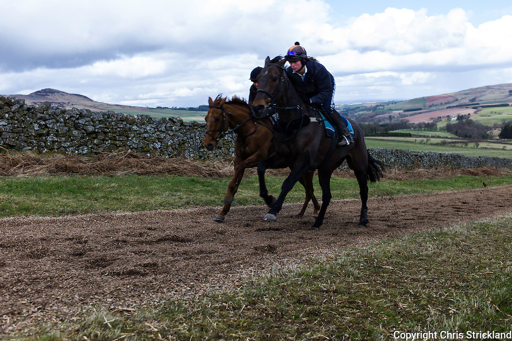 Bonchester Bridge, Hawick, Scotland, UK. 24th March 2014. Trainer Di Walton and daughter Joanna Walton, a jockey, working racehorses Just a Gin (left) and Moulton Brown on an all weather gallop in the Scottish Borders.