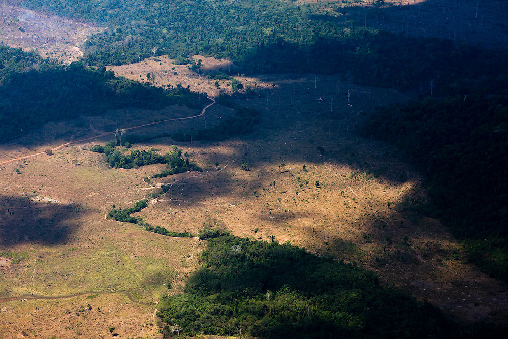 Cattle ranch land cleared from Amazon rainforest in the Sao Felix Do Xingu municipality of Para State, Brazil, August 12, 2008. Daniel Beltra/Greenpeace